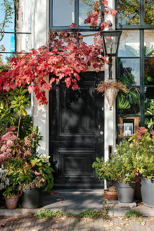 Black Door with plants – samuel-zeller-1-min