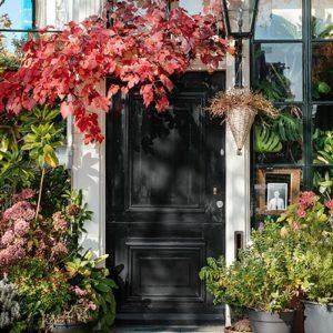 Black Door with plants - samuel-zeller-1-min